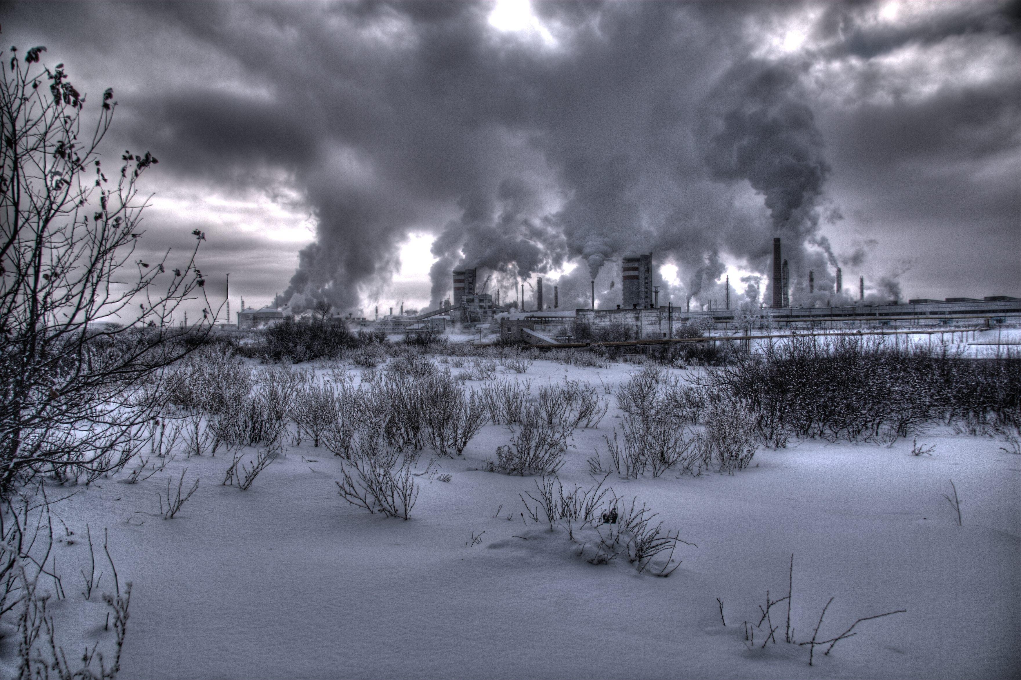 Черно белые картинки про зиму в павлодаре