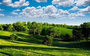 Green valley, зелёная, scenery, trees, photo, landscape, blue sky, clouds, nature обои